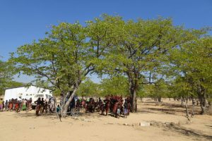 Himba villagers sit under tree